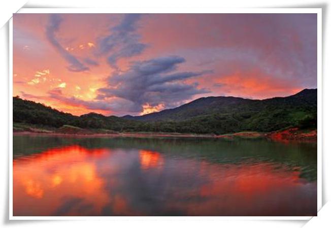 -亚马逊雨林生物多样性科考项目.jpg