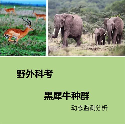 东非野生动物生存保护义工项目.jpg
