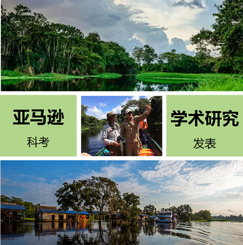 亚马逊雨林生物多样性科考项目.jpg
