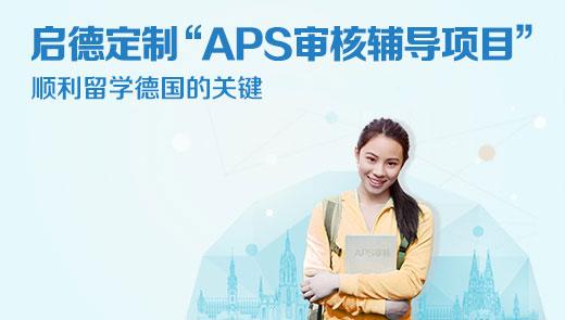 APS审核辅导项目