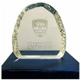 悉尼大学杰出合作伙伴奖