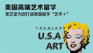 美国高端艺术留学