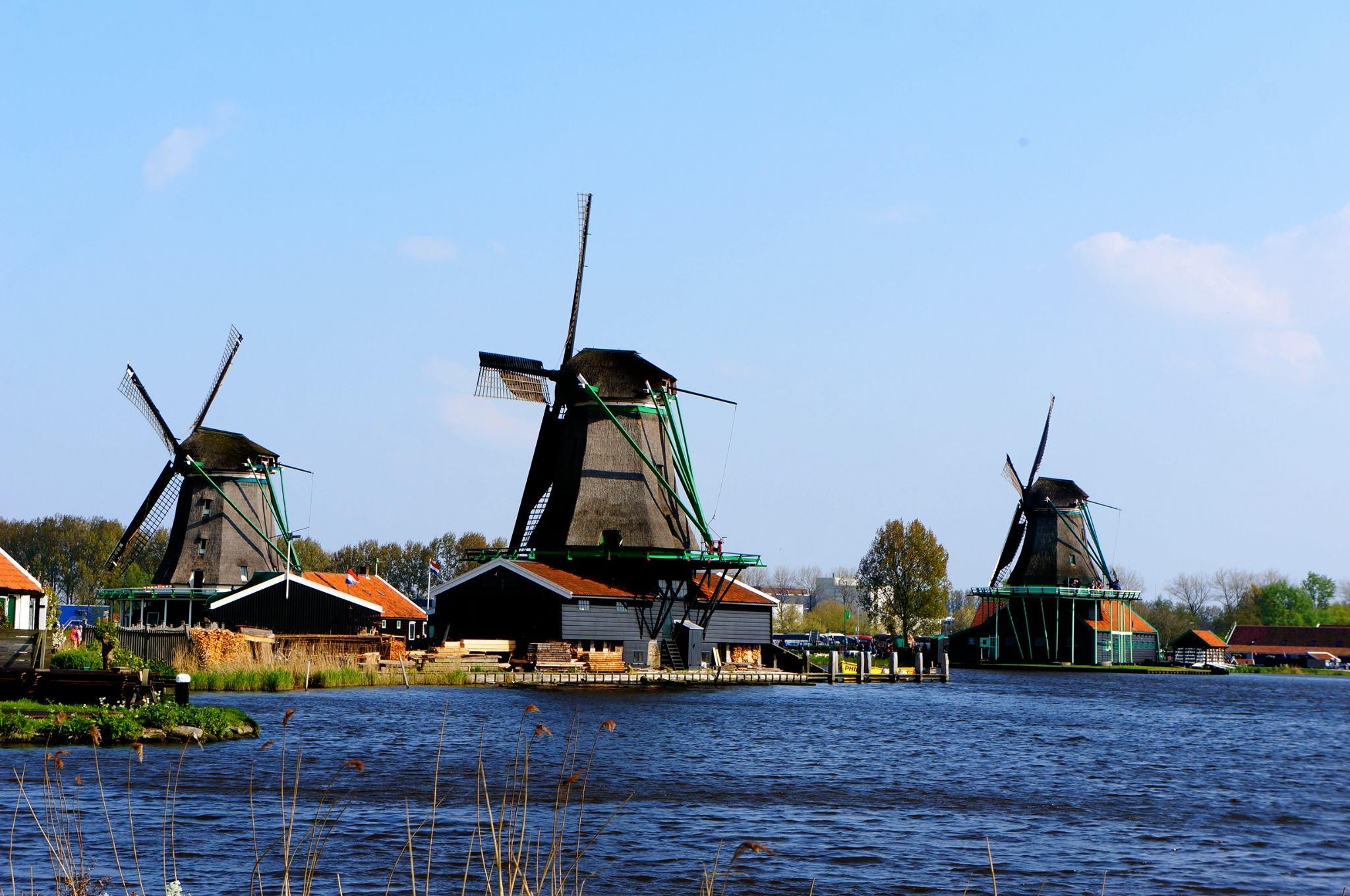QS世界大学排行-荷兰